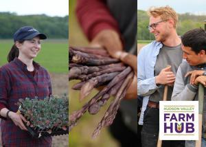 Farm Hub ProFarmer Program profile photo
